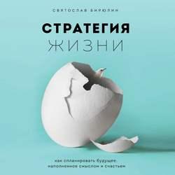 Бирюлин Святослав Борисович Стратегия жизни. Как спланировать будущее, наполненное смыслом и счастьем обложка