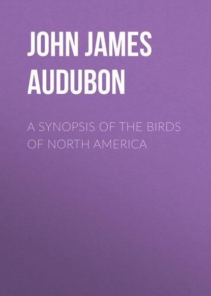 John James Audubon A Synopsis of the Birds of North America john sweeney north korea undercover