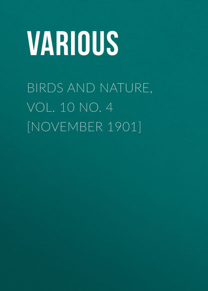 Фото - Various Birds and Nature, Vol. 10 No. 4 [November 1901] george h scithers amra vol 2 no 7 november 1959