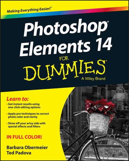 Barbara Obermeier Photoshop Elements 14 For Dummies agi team creative photoshop elements 9 digital classroom isbn 9781118017982