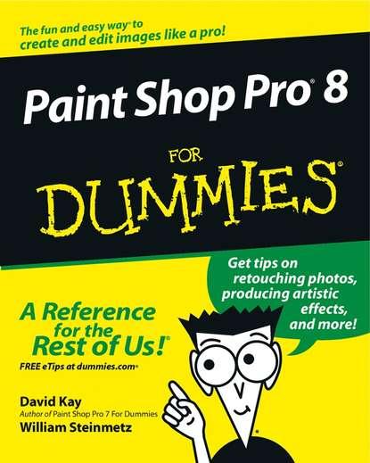 William Steinmetz Paint Shop Pro 8 For Dummies