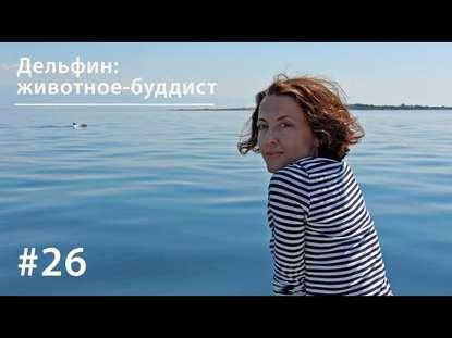 Евгения Тимонова Дельфин: животное-буддист