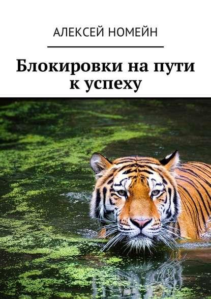 Алексей Номейн Блокировки на пути к успеху
