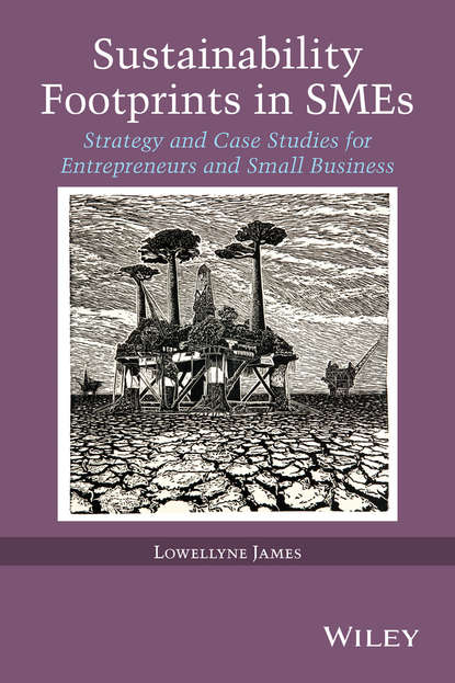 Lowellyne James Sustainability Footprints in SMEs. Strategy and Case Studies for Entrepreneurs and Small Business sustainability levels in the niger delta region of nigeria