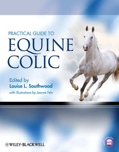 Fehr Joanne Practical Guide to Equine Colic grainne smith anorexia and bulimia in the family one parent s practical guide to recovery