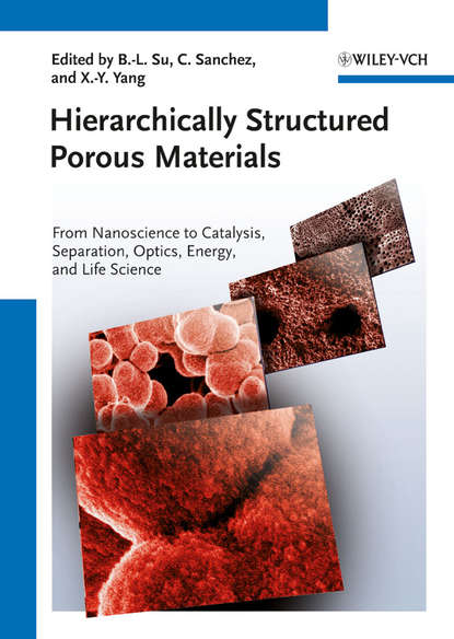Clement Sanchez Hierarchically Structured Porous Materials. From Nanoscience to Catalysis, Separation, Optics, Energy, and Life Science anthracnose and storage life extension of papaya using chitosan