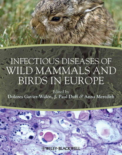 Anna Meredith Infectious Diseases of Wild Mammals and Birds in Europe bacterial contaminated stethoscopes a source of nosocomial infections