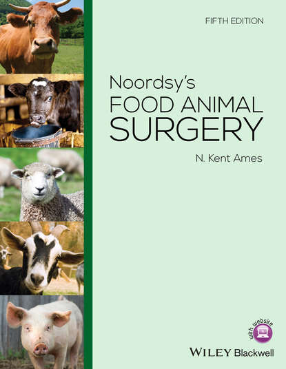 Фото - N. Kent Ames Noordsy's Food Animal Surgery phillip lerche handbook of small animal regional anesthesia and analgesia techniques