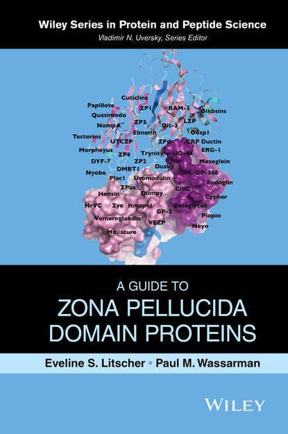 Eveline Litscher S. A Guide to Zona Pellucida Domain Proteins трос для лука domain bear archery domain 34