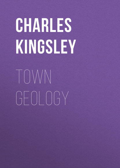 Charles Kingsley Town Geology environmental geology