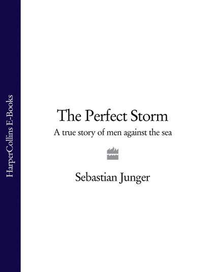 Фото - Sebastian Junger The Perfect Storm: A True Story of Men Against the Sea daniyar z baidaralin mulan the true story