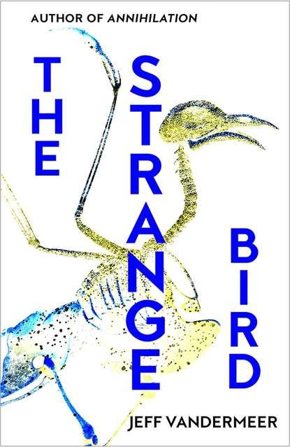 Фото - Jeff VanderMeer The Strange Bird jeff vandermeer the strange bird