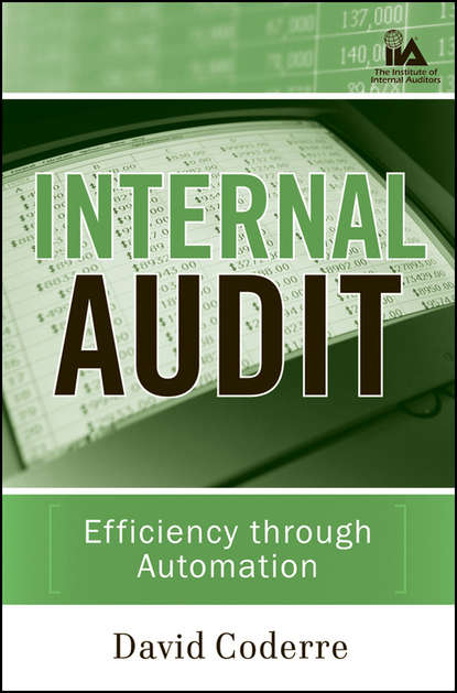 Группа авторов Internal Audit шампунь chapter