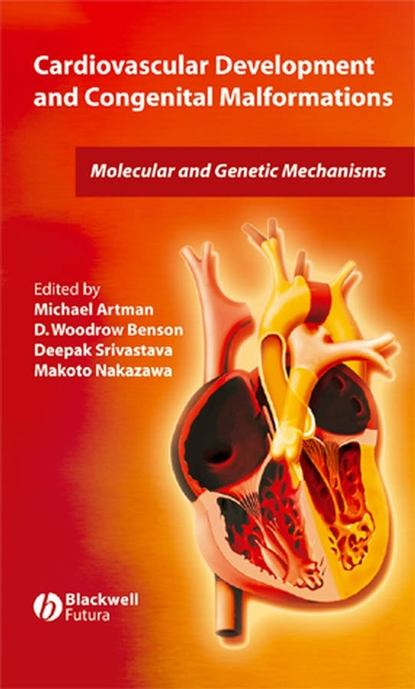 Фото - Michael Artman Cardiovascular Development and Congenital Malformations jamie goode a development of the cardiac conduction system