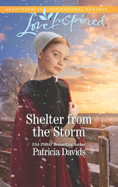 Patricia Davids Shelter From The Storm an amish paradox – diversity and change in the world s largest amish community