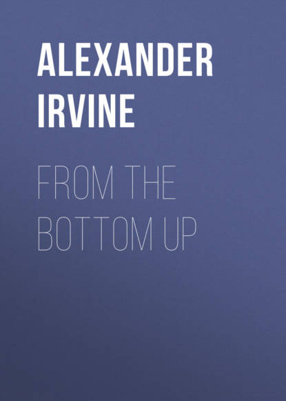 Alexander Irvine From the Bottom Up ory amitay from alexander to jesus