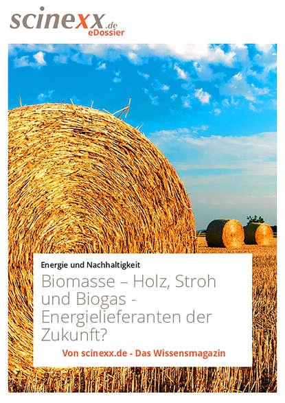Dieter Lohmann Biomasse недорого