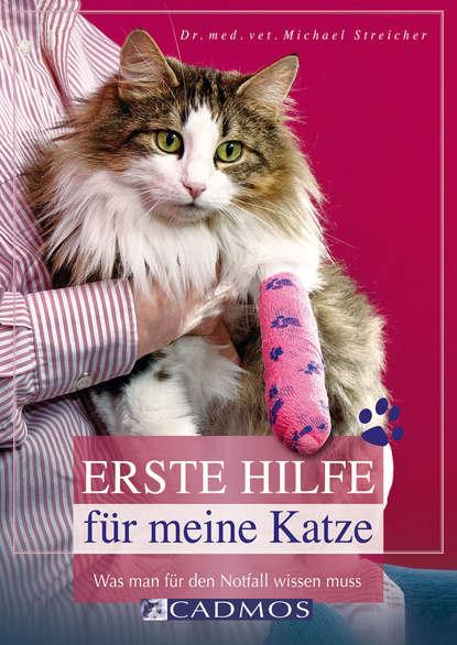 Michael Streicher Erste Hilfe für meine Katze michael streicher erste hilfe für meine katze