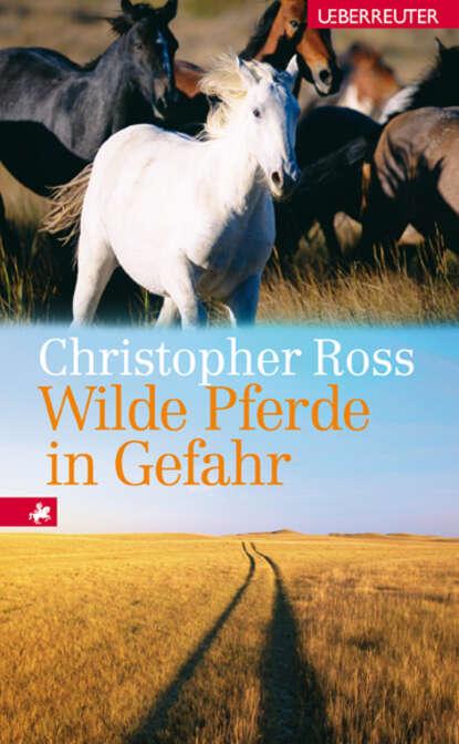 Christopher Ross Wilde Pferde in Gefahr ponyherz in gefahr