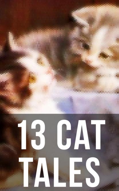 Эдгар Аллан По 13 Cat Tales w h wilkins the alien invasion