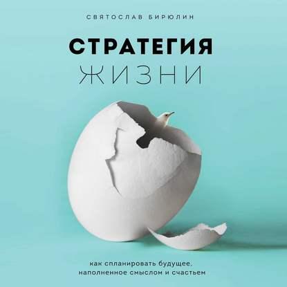 Святослав Бирюлин Стратегия жизни. Как спланировать будущее, наполненное смыслом и счастьем