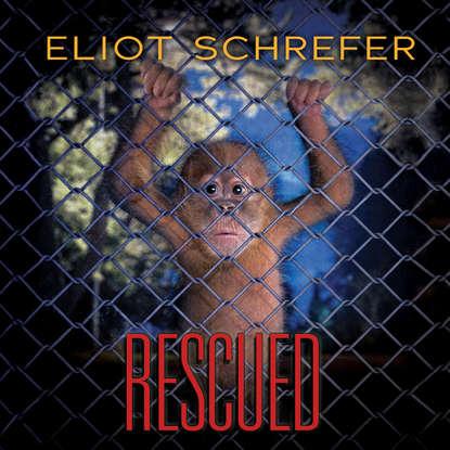 Eliot Schrefer Rescued - Ape Quartet 3 (Unabridged) a rubinstein string quartet no 3 op 17 no 3