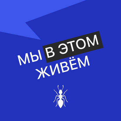 Творческий коллектив Mojomedia Выпуск № 21 s04 — Фифтет недорого
