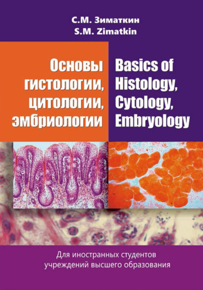 Сергей Зиматкин Основы гистологии, цитологии, эмбриологии / Basics of Histology, Cytology, Embryology недорого