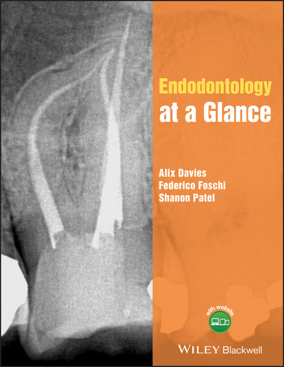 Shanon Patel Endodontology at a Glance a victor hoffbrand haematology at a glance