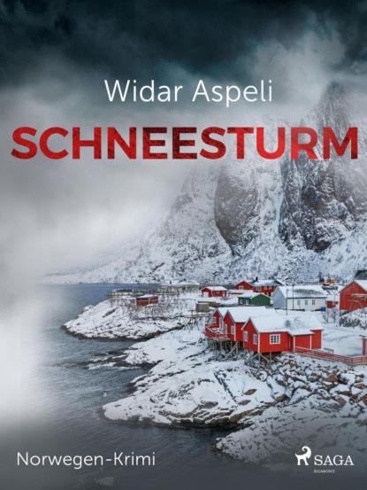 Фото - Widar Aspeli Schneesturm - Norwegen-Krimi widar aspeli schneesturm norwegen krimi