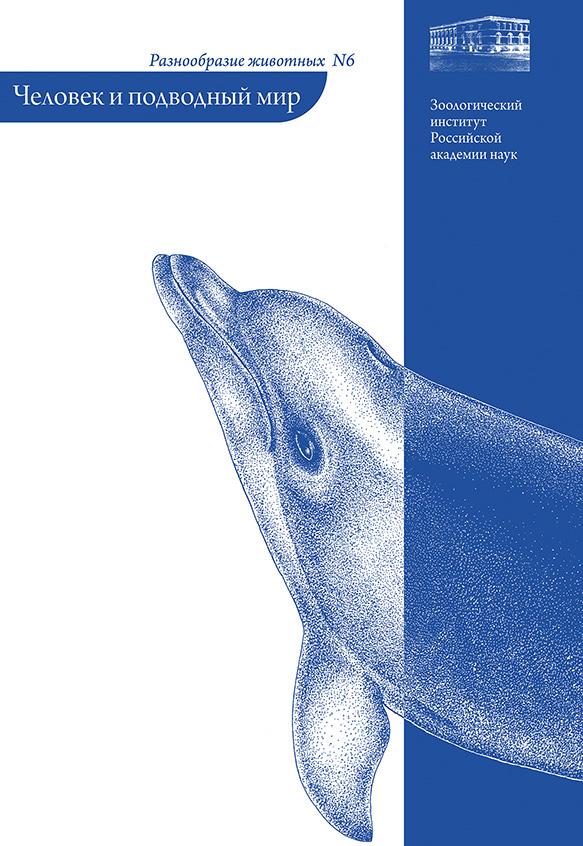 Человек и подводный мир
