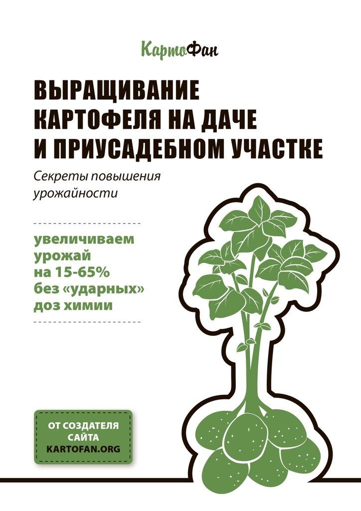 Выращивание картофеля на даче и приусадебном участке. Секреты повышения урожайности