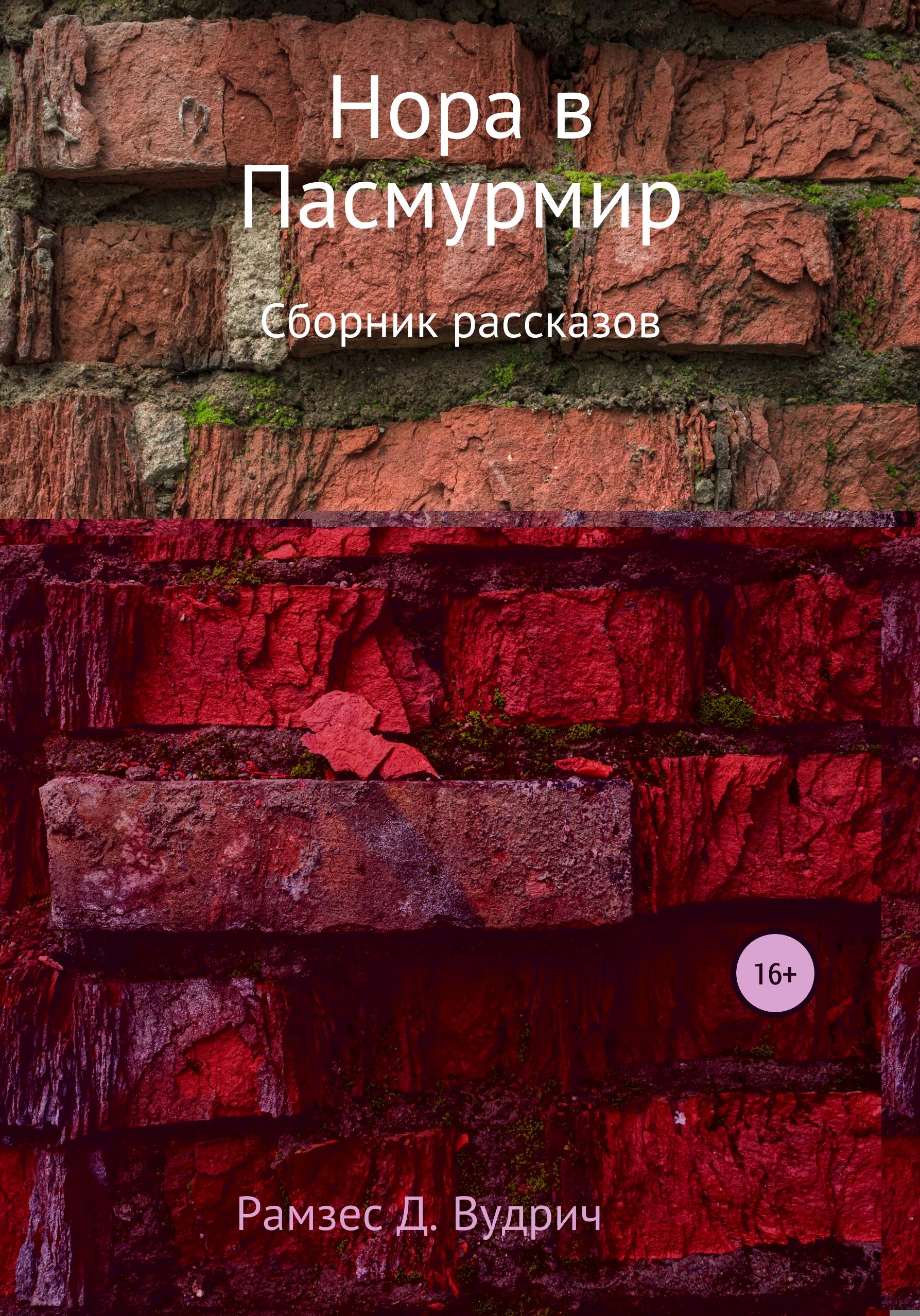 Нора в Пасмурмир. Сборник рассказов