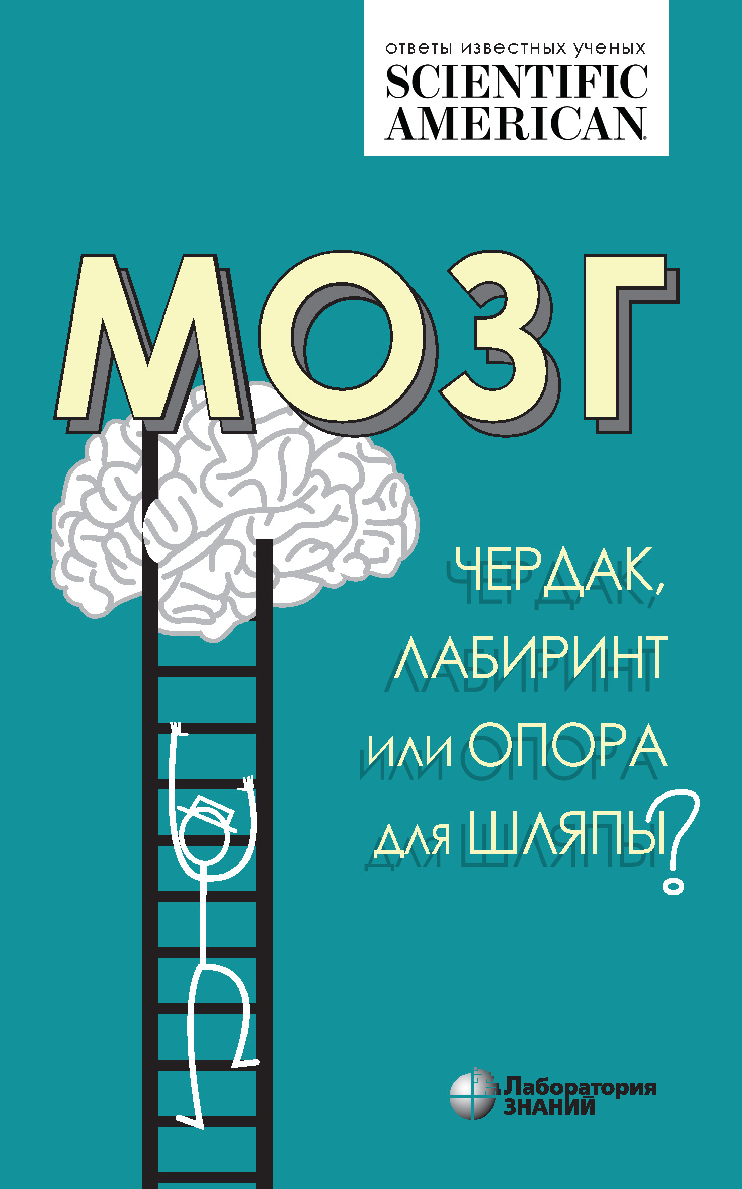 Мозг: чердак, лабиринт или опора для шляпы?