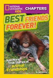 National Geographic Kids Chapters: Best Friends Forever: And More True Stories of Animal Friendships