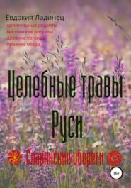 Целебные травы Руси