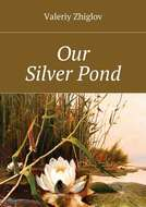 Our SilverPond