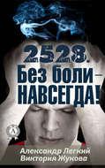 2528. Без боли – НАВСЕГДА