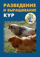 Разведение и выращивание кур