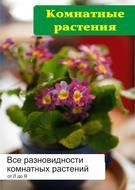 Все разновидности комнатных растений (от Л до Я)
