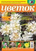 Цветок 10-2018