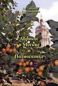 Абрикос в Москве и Подмосковье