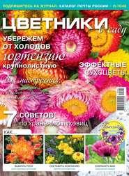 Цветники в Саду 01-2019