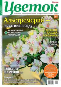 Цветок 04-2020