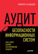 Аудит безопасности информационных систем (pdf+epub)