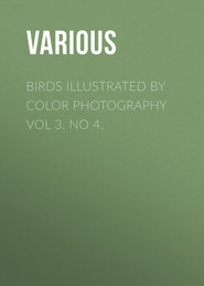Birds Illustrated by Color Photography Vol 3. No 4.