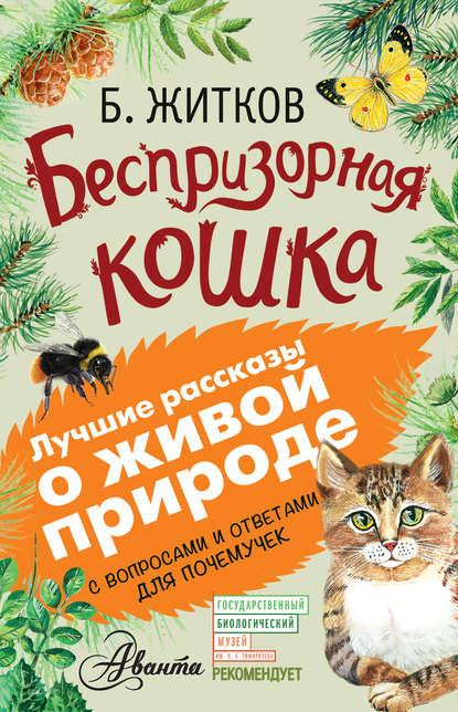 «Беспризорная кошка. С вопросами и ответами для почемучек» А. А. Мосалов, Борис Житков